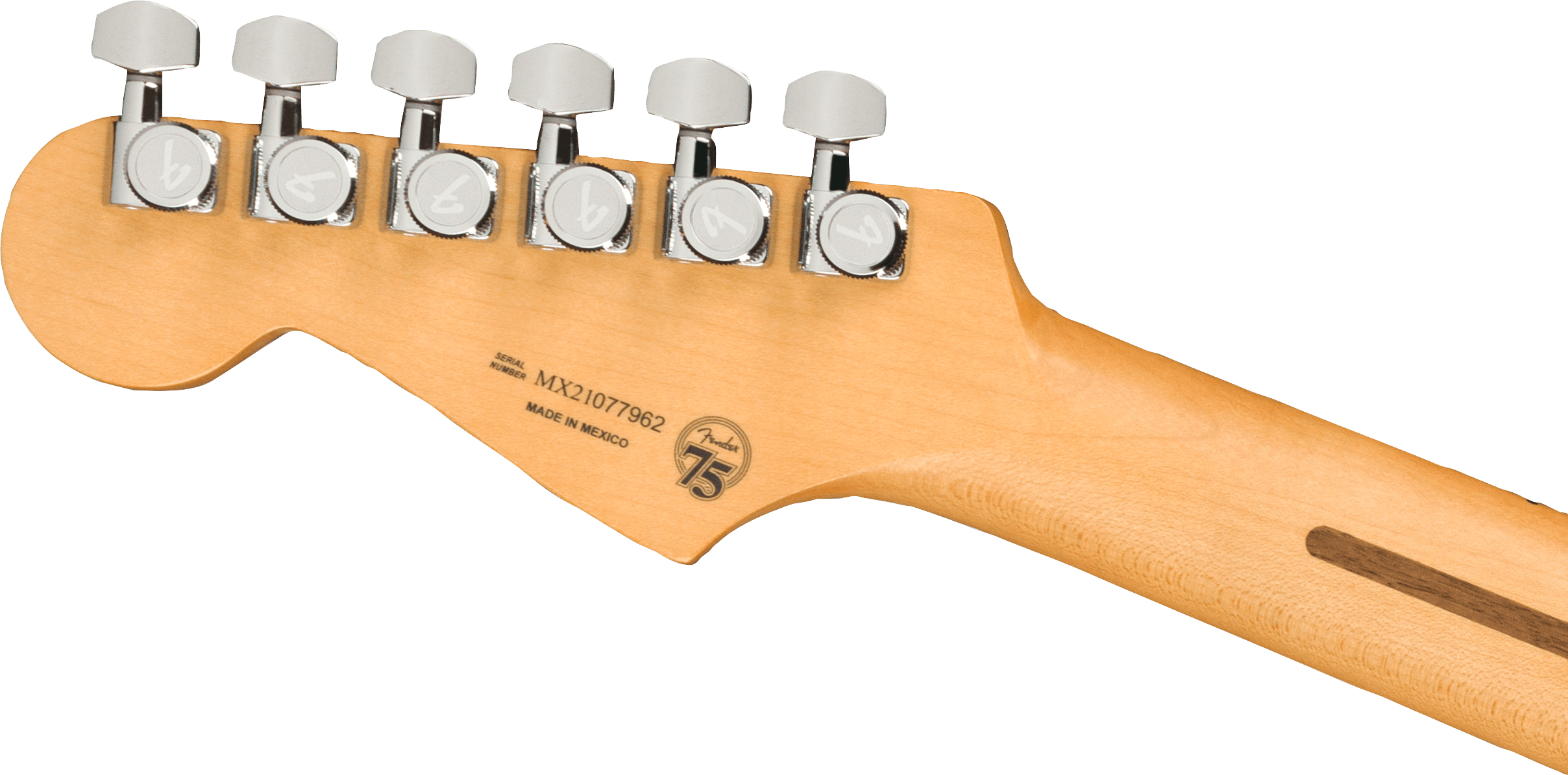 0147322300_player_plus_stratocaster_6